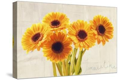 Summertime-Teo Rizzardi-Stretched Canvas Print