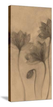 Autumn Grace I-Emma Forrester-Stretched Canvas Print