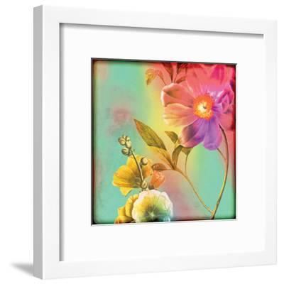 Flora Film 2-Tony Pazan-Framed Art Print