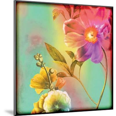 Flora Film 2-Tony Pazan-Mounted Art Print