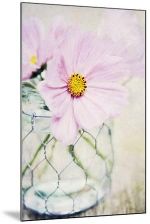 Summer Days III-James Guilliam-Mounted Giclee Print