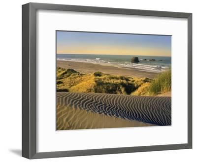 Coastline, Pistol River Beach, Oregon-Tim Fitzharris-Framed Art Print