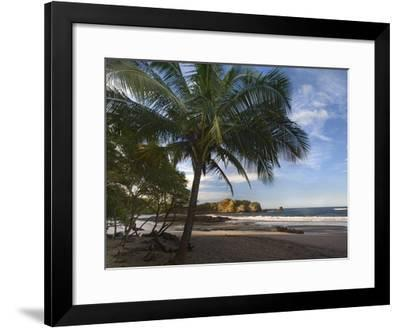 Palm trees line Pelada Beach, Costa Rica-Tim Fitzharris-Framed Art Print