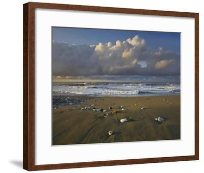 Beach and waves, Corcovado National Park, Costa Rica-Tim Fitzharris-Framed Art Print