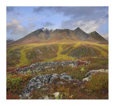 Cloudy Range, Tombstone Territorial Park, Yukon, Canada-Tim Fitzharris-Framed Art Print