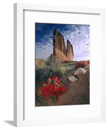 Paintbrush and the Organ Rock, Arches National Park, Utah-Tim Fitzharris-Framed Art Print