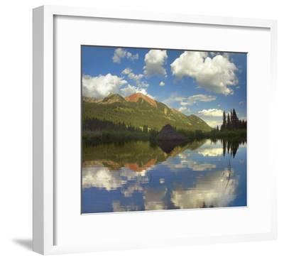 Avery Peak reflected in beaver pond, San Juan Mountains, Colorado-Tim Fitzharris-Framed Art Print