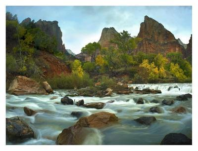 Court of the Patriarchs rising above river, Zion National Park, Utah-Tim Fitzharris-Framed Art Print