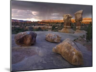 Devil's Garden sandstone formations, Escalante National Monument, Utah-Tim Fitzharris-Mounted Art Print