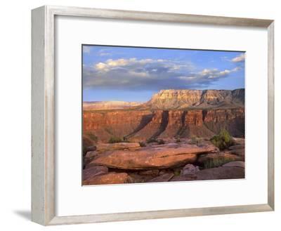 Aubrey Cliffs from Toroweap Overlook, Grand Canyon National Park, Arizona-Tim Fitzharris-Framed Art Print