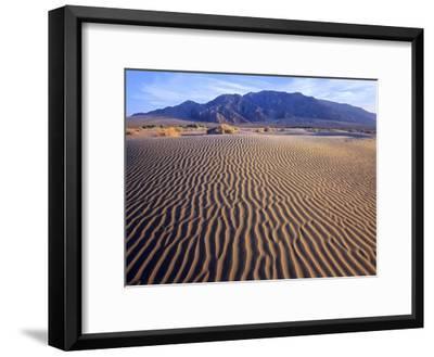 Tucki Mountain and Mesquite Flat Sand Dunes, Death Valley National Park, California-Tim Fitzharris-Framed Art Print