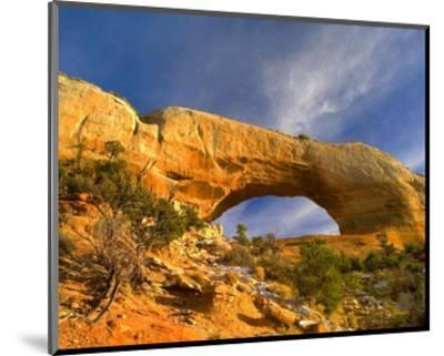 Wilson Arch with a span of 91 feet and height of 46 feet, made of entrada sandstone, Utah-Tim Fitzharris-Mounted Art Print