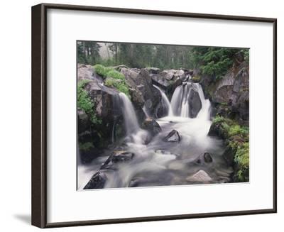 Paradise River cascade, Mt Rainier National Park, Washington-Tim Fitzharris-Framed Art Print