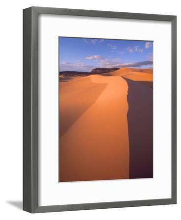Wind ripples in sand dunes, Coral Pink Sand Dunes State Park, Utah-Tim Fitzharris-Framed Art Print