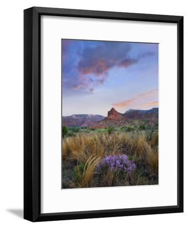 Caprock Canyons State Park, Texas-Tim Fitzharris-Framed Art Print