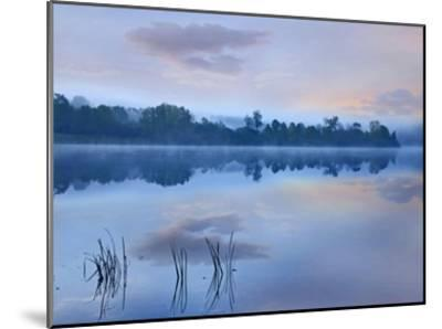 Mist over Lackawanna Lake, Lackawanna State Park, Pennsylvania-Tim Fitzharris-Mounted Art Print