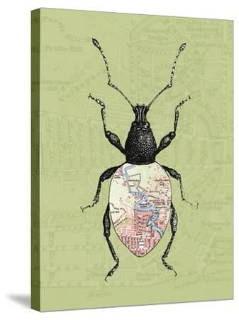 Creature Cartography VI-The Vintage Collection-Stretched Canvas Print