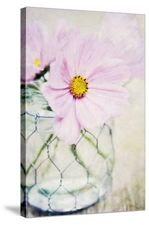 Summer Days III-James Guilliam-Stretched Canvas Print