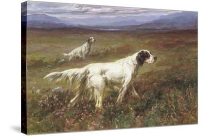 Setters on the Moors-Maud Earl-Stretched Canvas Print
