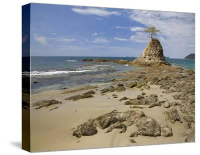 Point with tree on Penca Beach, Costa Rica-Tim Fitzharris-Stretched Canvas Print