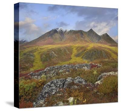 Cloudy Range, Tombstone Territorial Park, Yukon, Canada-Tim Fitzharris-Stretched Canvas Print