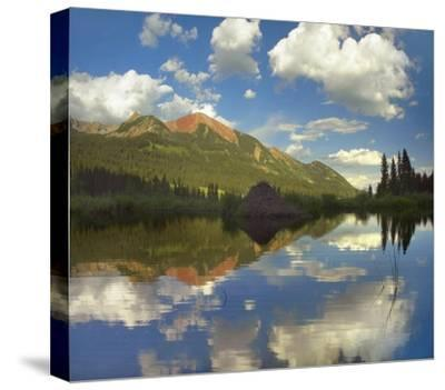 Avery Peak reflected in beaver pond, San Juan Mountains, Colorado-Tim Fitzharris-Stretched Canvas Print