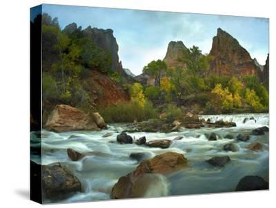 Court of the Patriarchs rising above river, Zion National Park, Utah-Tim Fitzharris-Stretched Canvas Print