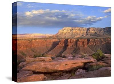 Aubrey Cliffs from Toroweap Overlook, Grand Canyon National Park, Arizona-Tim Fitzharris-Stretched Canvas Print