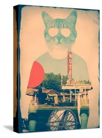 The Cat-Ali Gulec-Stretched Canvas Print