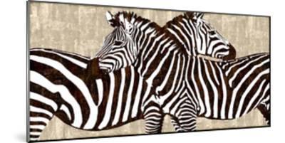 Zebra Gathering-Darren Davison-Mounted Giclee Print