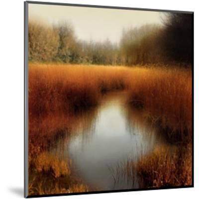 Sunlit Pond II-Madeline Clark-Mounted Giclee Print