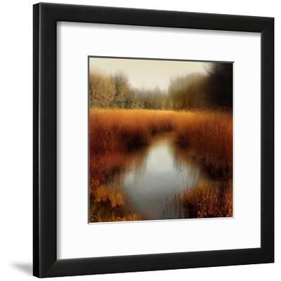 Sunlit Pond II-Madeline Clark-Framed Giclee Print