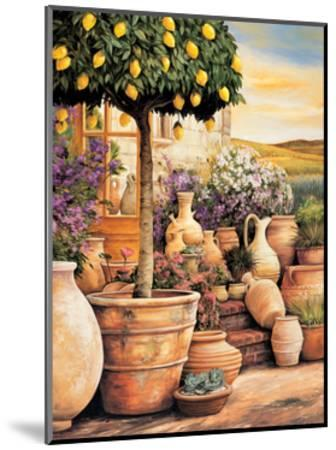 Lemon Topiary-Eduardo Moreau-Mounted Giclee Print