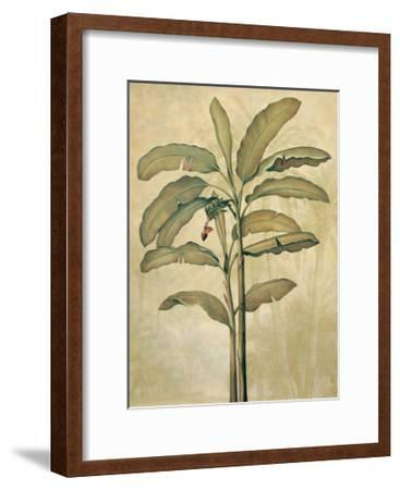 Palms of the Tropics II-Jill Deveraux-Framed Giclee Print
