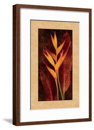 Heliconia-John Seba-Framed Giclee Print