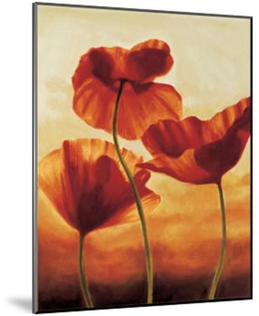 Poppies in Sunlight II-Andrea Kahn-Mounted Giclee Print