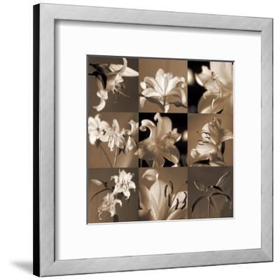 Lily Garden-Caroline Kelly-Framed Giclee Print