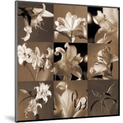 Lily Garden-Caroline Kelly-Mounted Giclee Print