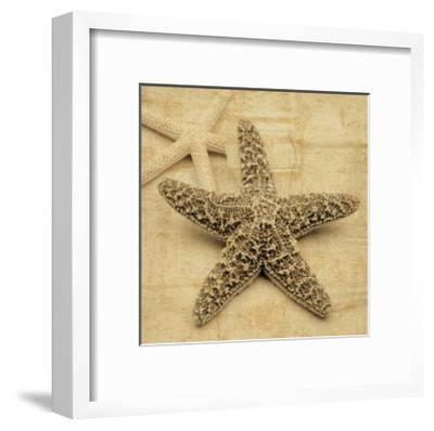 Starfish-John Seba-Framed Giclee Print