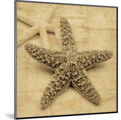 Starfish-John Seba-Mounted Giclee Print