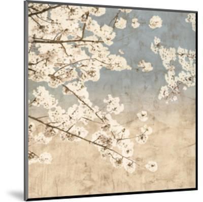 Cherry Blossoms II-John Seba-Mounted Giclee Print