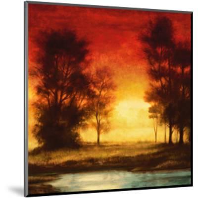 Evening Light II-Neil Thomas-Mounted Giclee Print