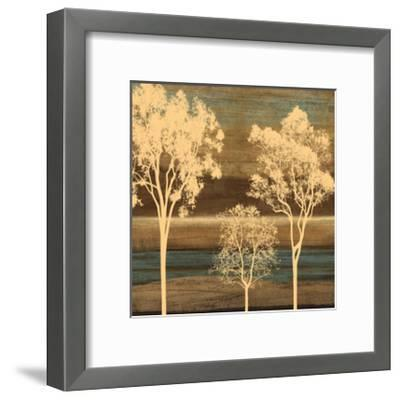 Ambiance II-Chris Donovan-Framed Giclee Print