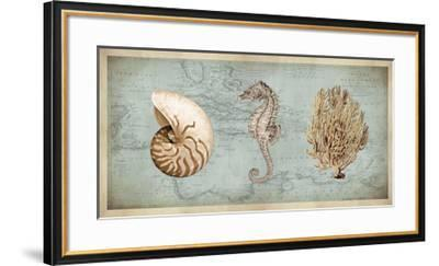 Sea Treasures I-Deborah Devellier-Framed Giclee Print