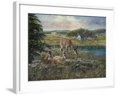 Evening Shadows-Carolyn Mock-Framed Art Print