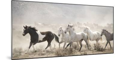 Open Range--Mounted Giclee Print