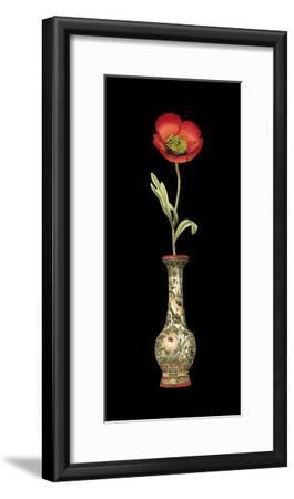 Poppy Magic I--Framed Premium Giclee Print