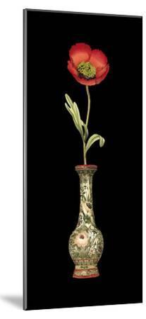 Poppy Magic I--Mounted Premium Giclee Print