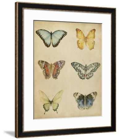 Butterfly Varietal I-Megan Meagher-Framed Giclee Print