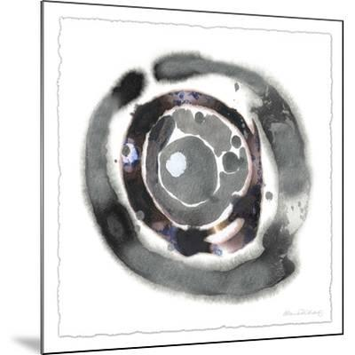 Meteorite I-Alicia Ludwig-Mounted Limited Edition